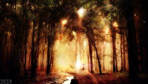 The Enchanted Forest by Tanef