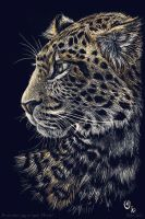 Scratch art: Chinese leopard - color by theOlven