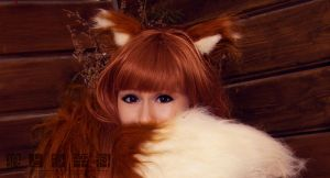 Spice and Wolf by KyrieMayCry