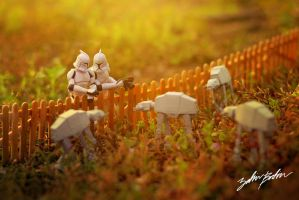 AT-AT Farm.. by ZahirBatin