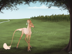 Illyria | Doe | Commoner (its complicated) by Tattered-Dreams