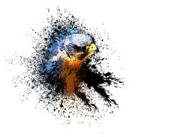 Falcon Paint Splat by kemza