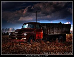 Where old trucks go to die by needlz