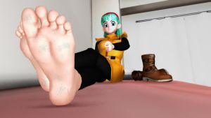 Bulma's orders by ExTRiMe222
