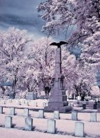 Infrared Cemetery by La-Vita-a-Bella