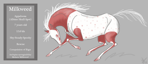 Official Milkweed Reference by Weavrrcat