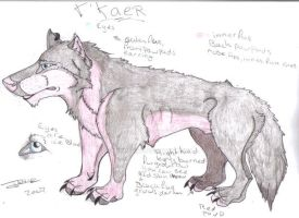 T'Kaer - reference by Isofur
