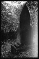tomb by covanea