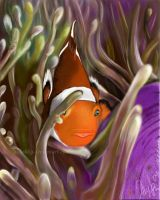 clown fish by Aliushka