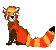 CO: Red Panda Design by poltergyst