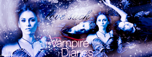 The Vampire Diaries Banner 2 by theanyanka