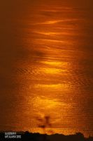Orange Sea by alahay