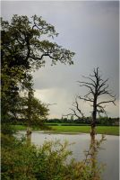 Leicestershire countryside by Chrobal