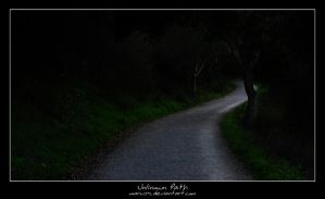 Unknown Path by marius-c