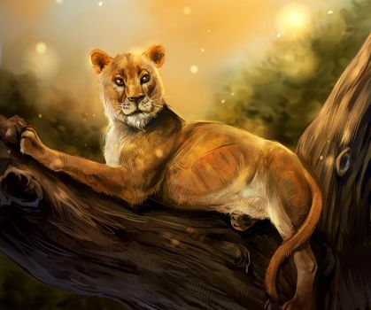 The lioness by Araxel