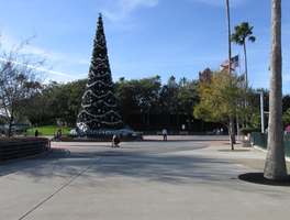 christmas Tree WDW Hollywood Studios 4 by WDWParksGal-Stock