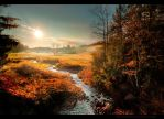 Monongahela Stream Sunrise by AugenStudios