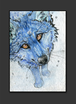 ATC .: First Snow :. by WhiteSpiritWolf
