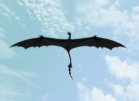 Celestial or Temeraire, Flying by Haruchicken