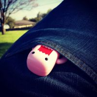 Pocket Domo! 38/365 by PiliBilli