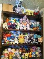 Pokemon Plush Collection by ChatotLover448