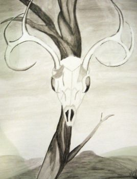 Deer Skull by dreamsforcali