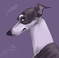 vanna in purple by shelzie