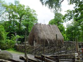 Thatched cottage by dani221