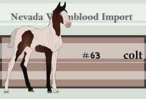 Nevada Warmblood 63 by BRls-love-is-MY-Live