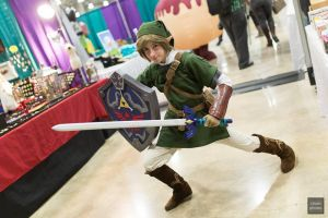 Link [Animate! Miami 2014] by SAYA-LOURA
