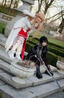 SAO - Kirito and Asuna 01 by kitsunesqueak