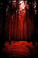 the bloody forest by earthlab