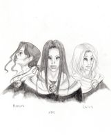 The Volturi by Aaraujo