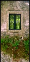 The Window by Digaas