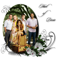 Hart of Dixie Banner by SouthernDaydreamer
