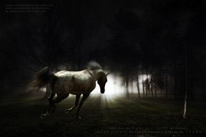 A Light in the Dark by adverbial-spectra
