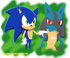 Sonic and Lucario by Sonicth62