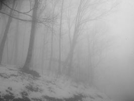 Welcome to Silent Hill by Ayedeas