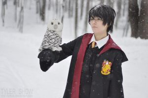 Harry Potter cosplay 2 by Eletiel