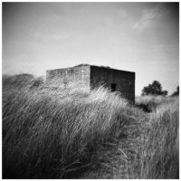Holga 003 by my-plastic-eye