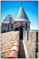 Carcassone 1 by calimer00