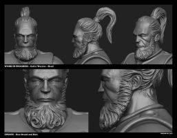 Celtic Warrior WIP03 Head by Texelion