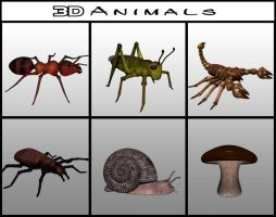 3D Animals by Artwork-Production