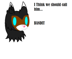 Bandit the wolf by UnTaMeD-rOsE