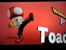 Toad 4 SMASH by Rotommowtom