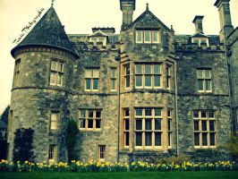 Castle in England by TaniaMPhotographie