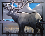 Elk by Duncan-Eagleson