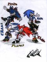 Chaos Knights Team Pic by sonichero360