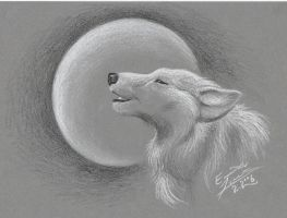 The howling of a night wolf by Paperiapina
