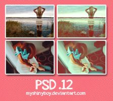 PSD .12 by MyShinyBoy